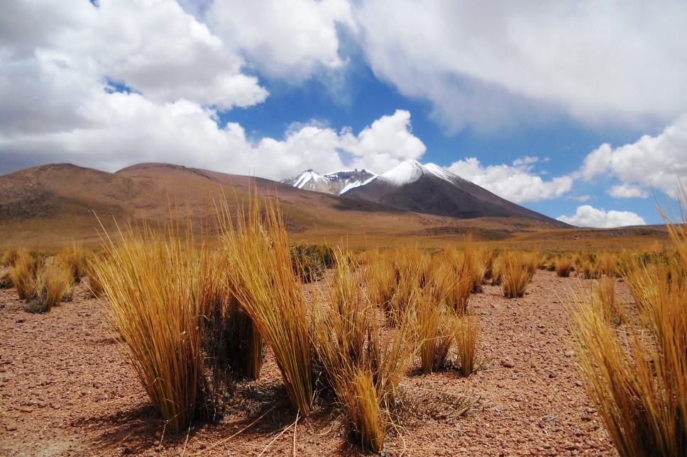 desierto de sololi (2)