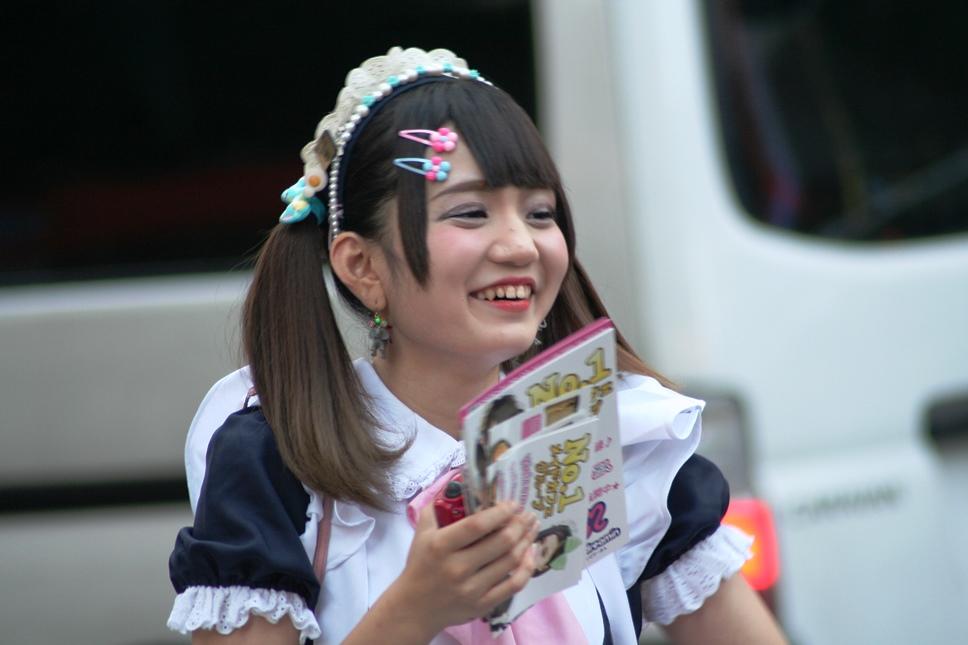 akihabara (10)