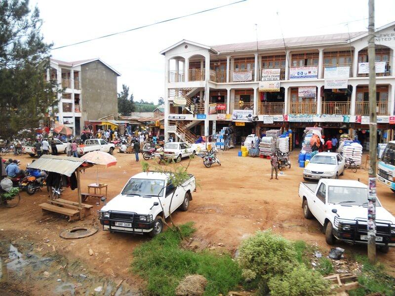 bwindi (1)