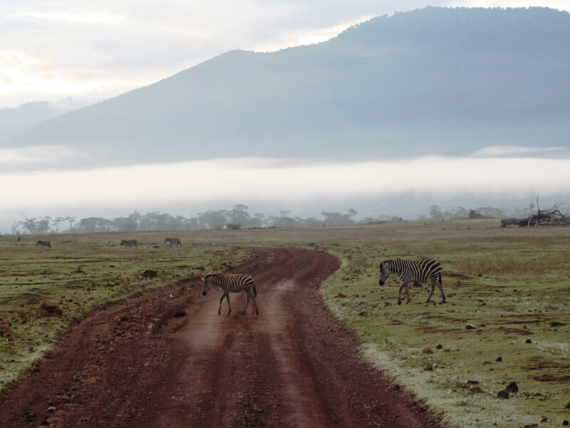 np ngorongoro (2)