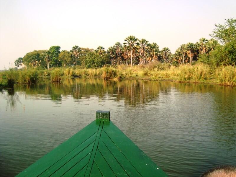 monkey bay (2)