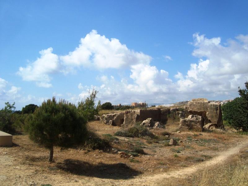 paphos (8)