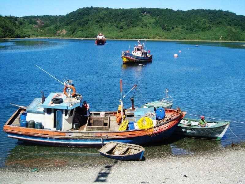 puerto montt (5)
