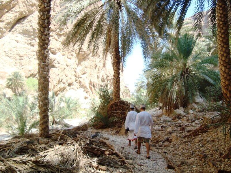 wadi shab (10)